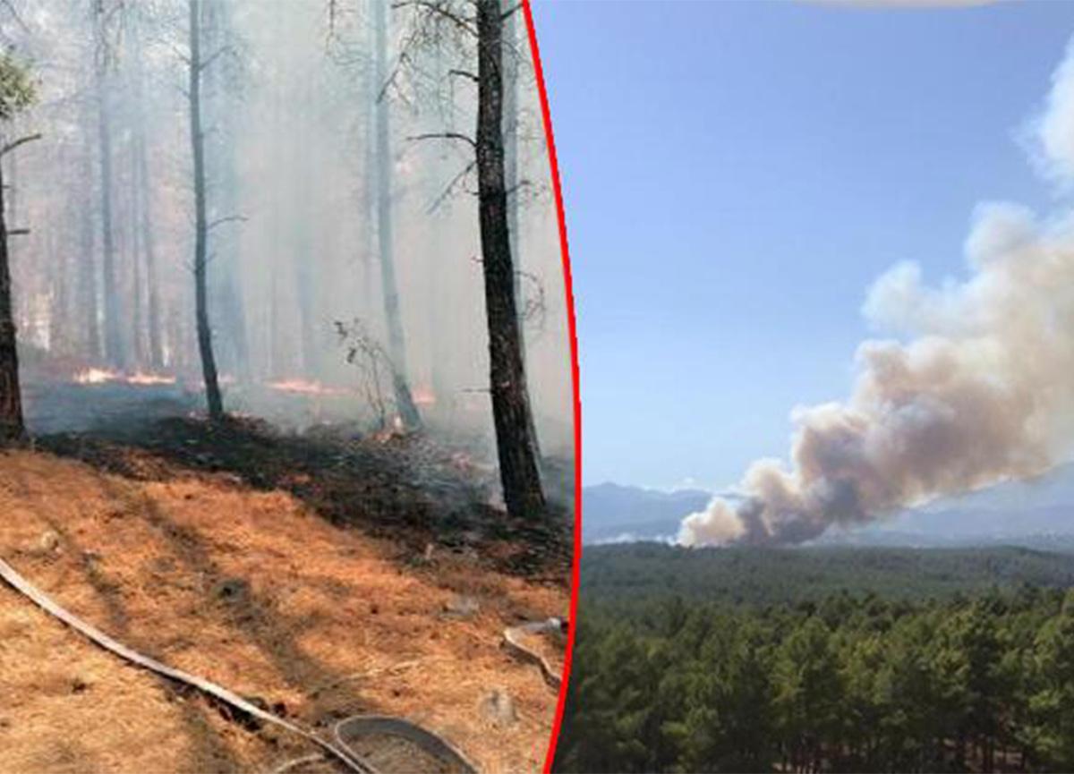 Son dakika: Antalya'nın Kaş ilçesinde orman yangını!