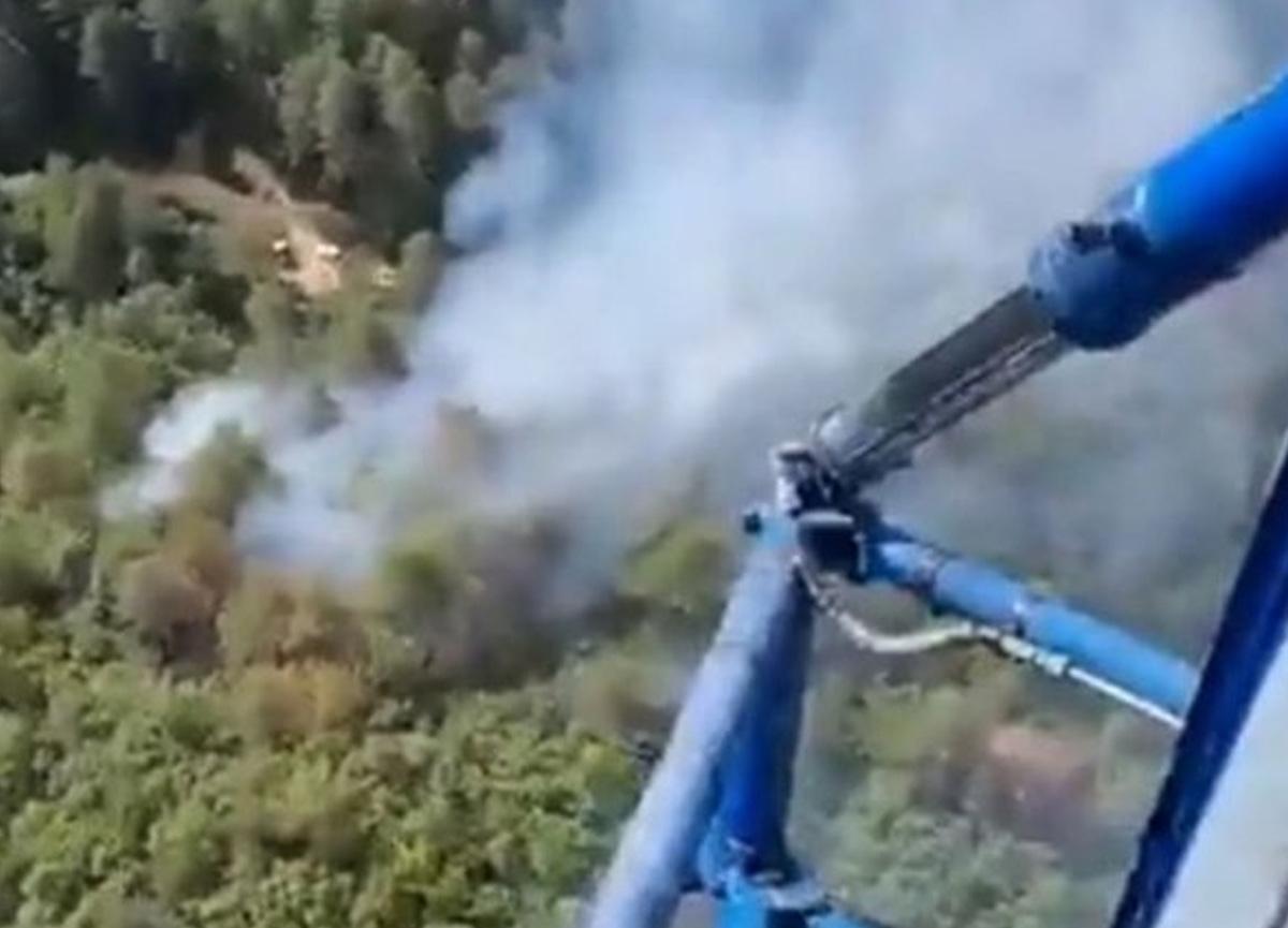 Balıkesir'de orman yangını! Havadan ve karadan müdahale ediliyor