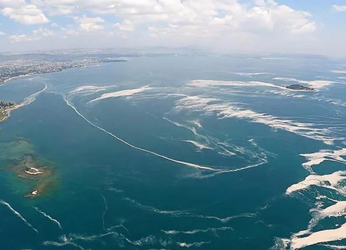 Marmara Denizi'nde yeni tehlike! Müsilajdan sonra şimdi de oksijen azlığı
