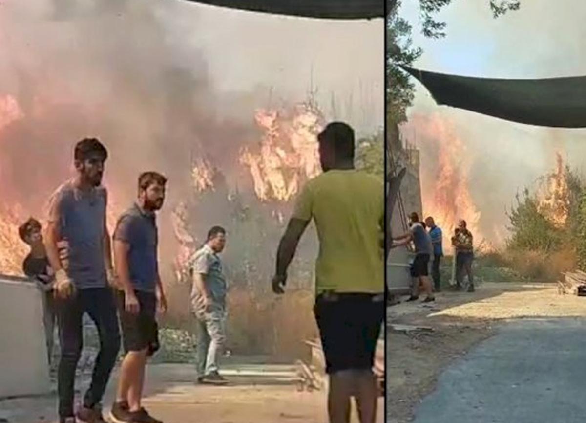 Bodrum'da yangın paniği! Evlere sıçramadan söndürüldü