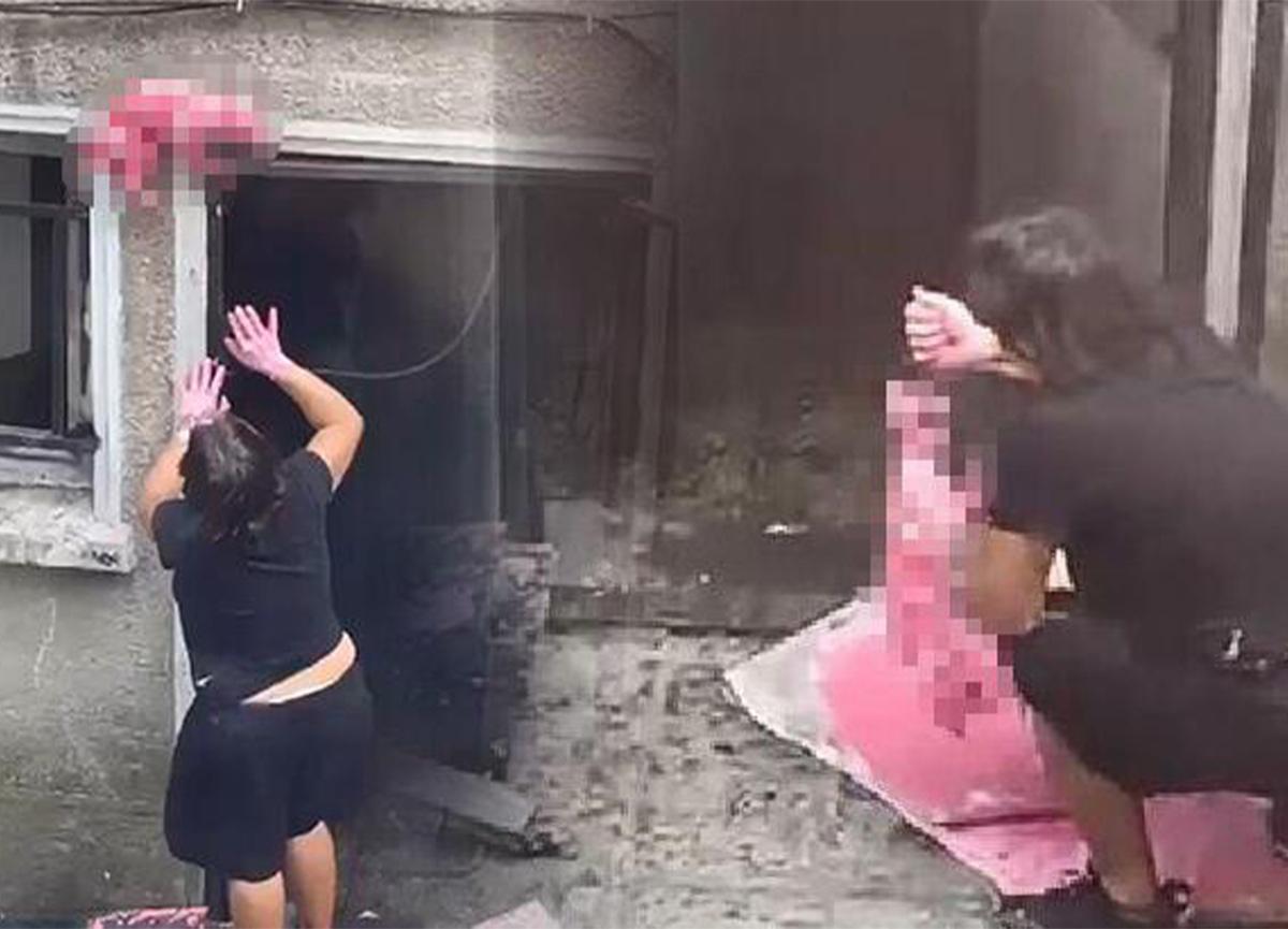 Şişli'de şoke eden manzara! Ölü kediyi boyayıp pencereye astı